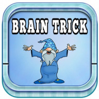 Brain tricks puzzles for kids Online