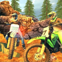 Offroad Motorcycle Bike Racing 2020